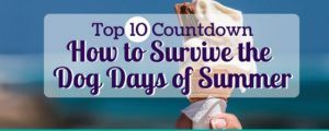 How to Survive the Dog Days of Summer Top 10 Countdown