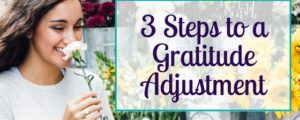 3 Steps to a Gratitude Adjustment